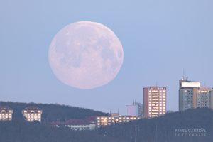 """Pokud se chystáte vyfotografovat vycházející či zapadající Měsíc, je jedno, zda daný úplněk bude """"super"""" či nikoli. Každý úplněk je totiž příležitostí k zajímavému úlovku. Na tomto snímku je zapadající březnový úplněk nad siluetou Brna. Foto: Pavel Gabzdyl."""